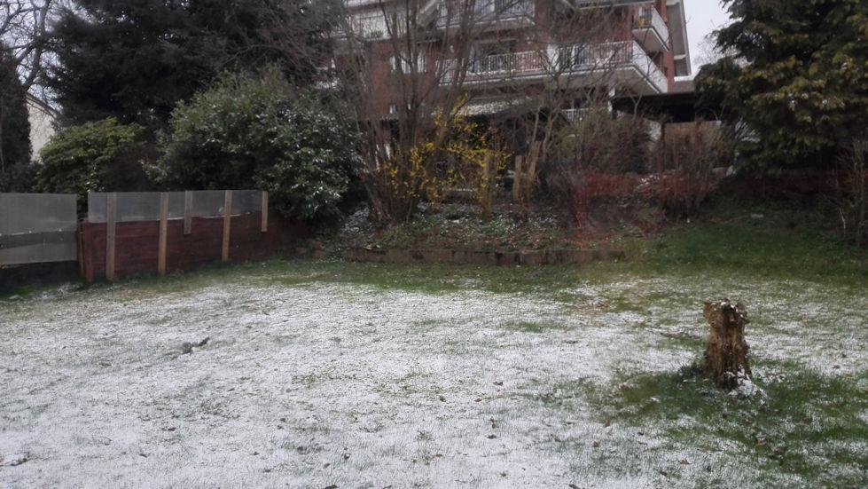Schnee auf der Wiese